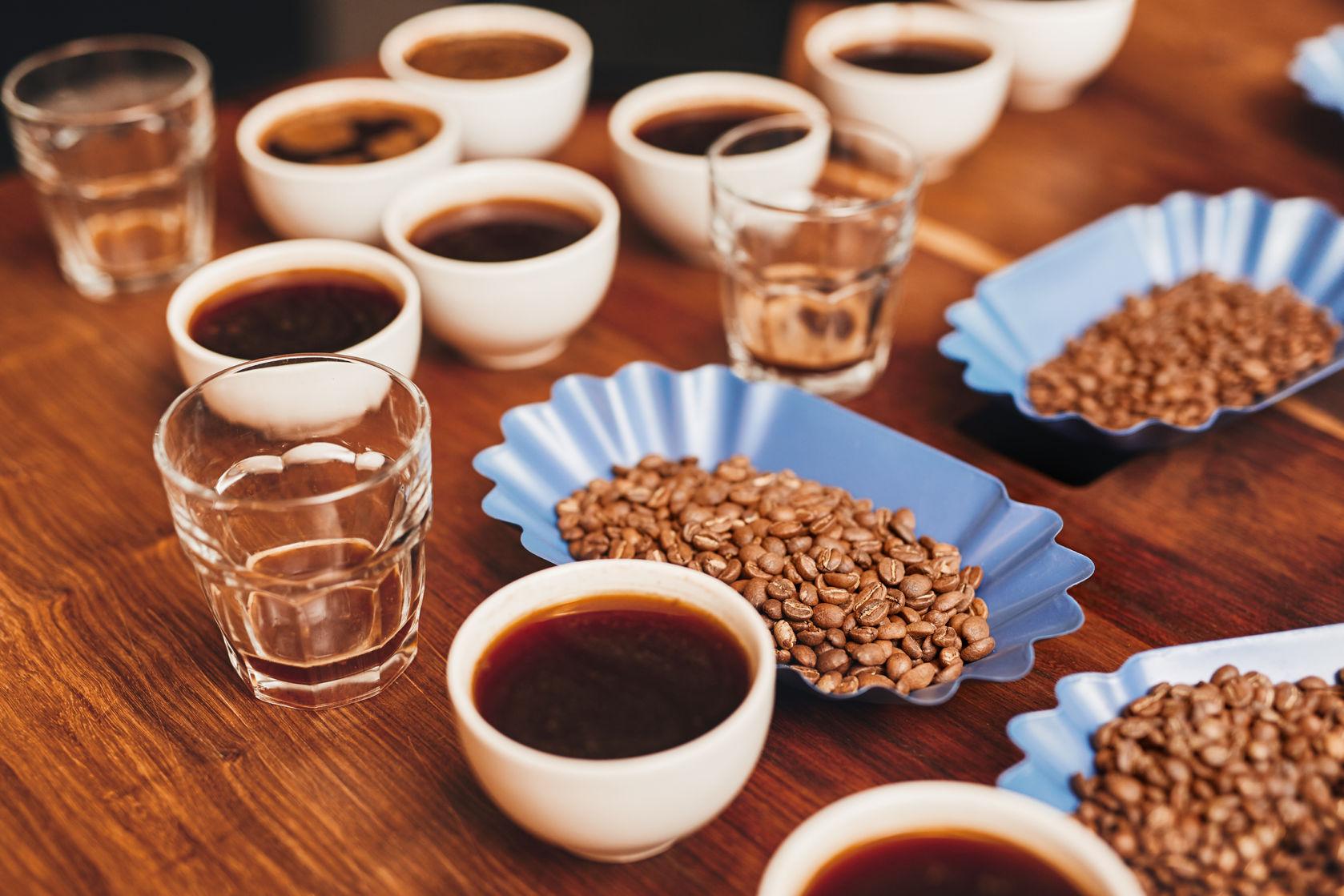 degustare_cafeagourmet