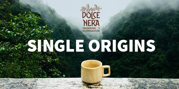 ceasca cafea in natura